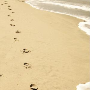 verhaal-voetstappen-dichtbij-zout